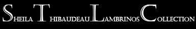 STL logo small.jpg