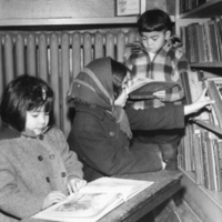 #71 Public library.jpg