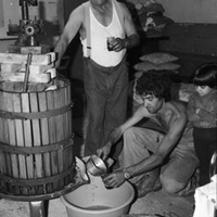 Making wine in the basement.jpg
