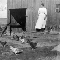 """""""Rose feeding chickens"""" at St. Christopher House summer camp in Lake Scugog"""
